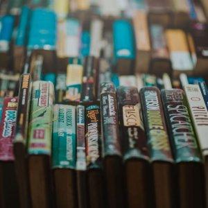 abundance-bookcase-books-775998 (1)